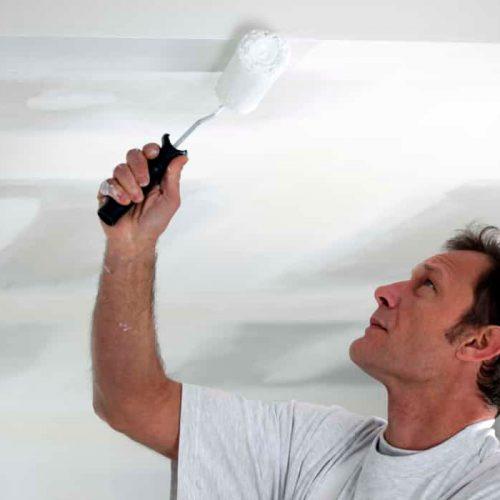 Reformas integrales en Alcala de Henares pintores trabajador pintando techo